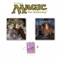 Livres : The Art of Magic The Gathering