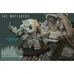 Kalhana (Inclue dans le starter) - THE WAYFARERS - THE DROWNED EARTH