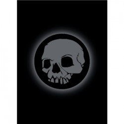 50 Protèges Cartes Legion - Matte Sleeves - Absolute Iconic - Skull