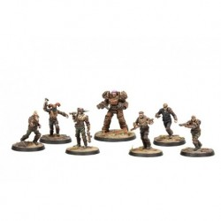 VO - FALLOUT WASTELAND WARFARE - RAIDERS CORE SET