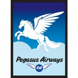 50 Protèges Cartes Legion Legion - Standard Sleeves - Pegasus Air