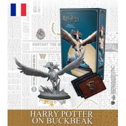 VF - Harry Potter - Harry Potter sur Buck