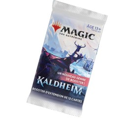 VF - 1 Booster d'extension Kaldheim - Magic The Gathering