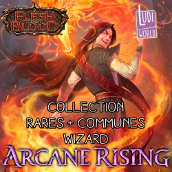 Set de cartes Communes + Rares Wizard - Flesh & Blood